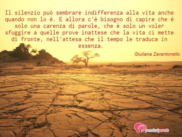 Immagine con frase silenzio di Giuliana Zarantonello - Il