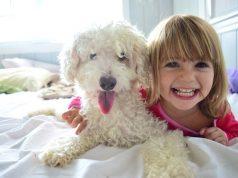 cani e gatti fanno bene ai bambini