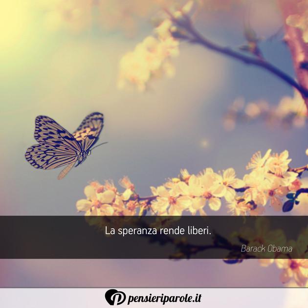 Immagini Con Frasi Farfalle Pensieriparole