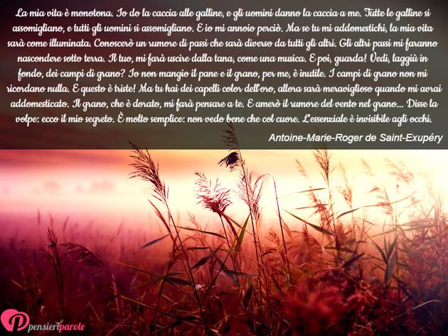 Immagine Con Frase Libri Di Antoine Marie Roger De Saint Exupery