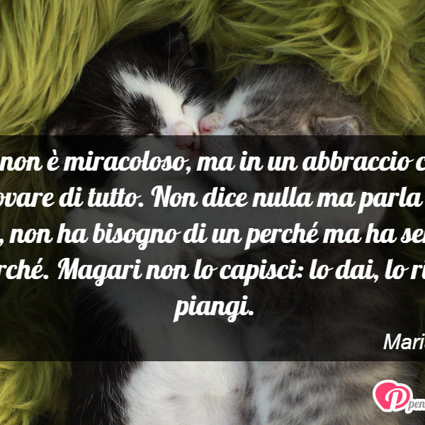 Amato Forse non è miracoloso, ma in un abbraccio ci - Maria Viola  NC34