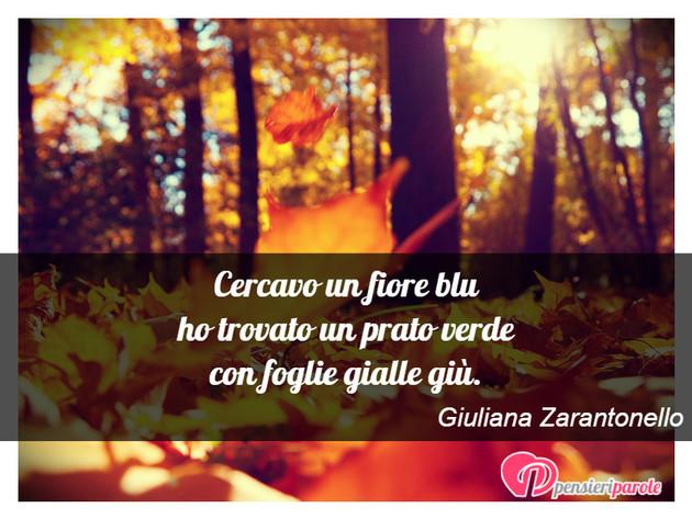 Fiori Gialli Frasi.Immagine Con Poesia Poesie Personali Di Giuliana Zarantonello